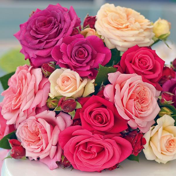 verschieden farbige Rosenblüten im Strauss liegend auf Tisch